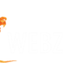 Webzilla Instant Files icon