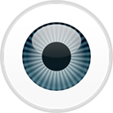 ESET Endpoint Security icon