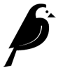 Wagtail CMS icon