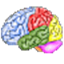 Brain Workshop icon
