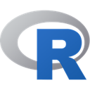 R icon (programming language)