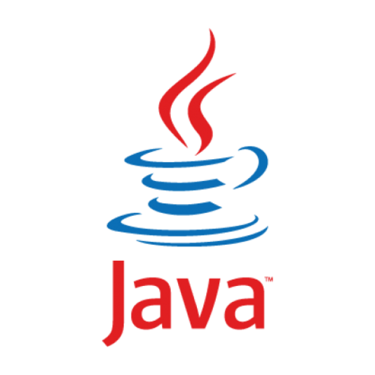 Java Runtime Environment 8.0 build 31 (32-bit)
