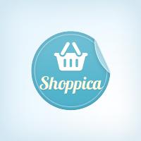 top 10 best WordPress theme- Shoppica
