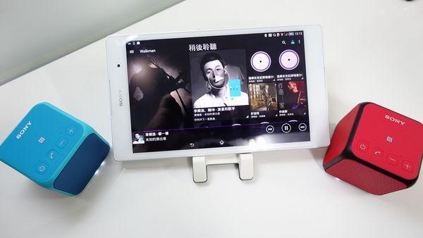 Sony SRS-X11 Battery