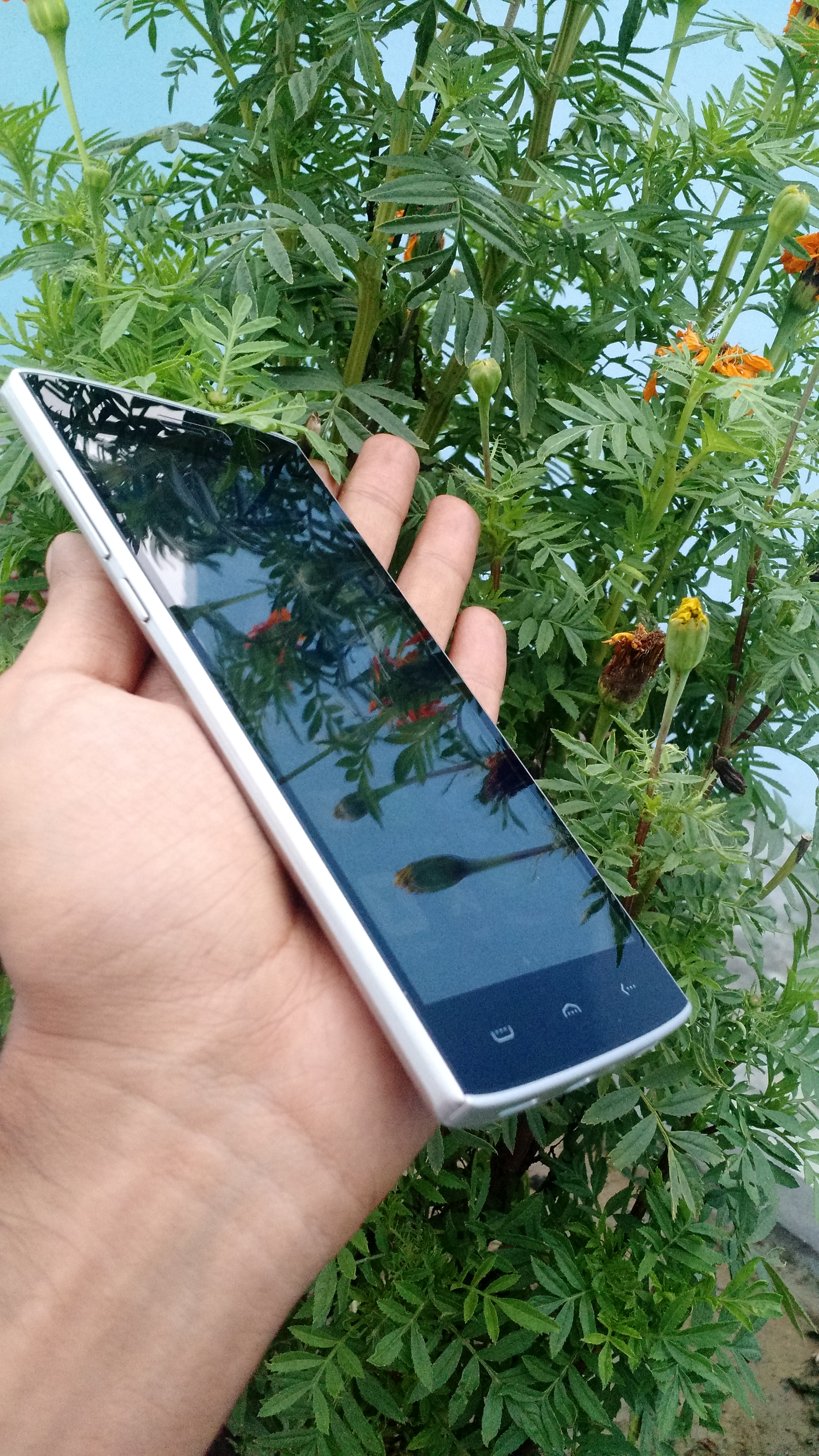 homtom ht7 pro review