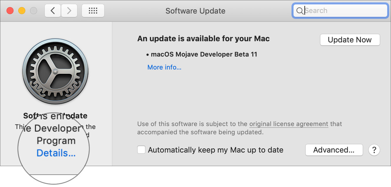 Click Details in the software update on Mac