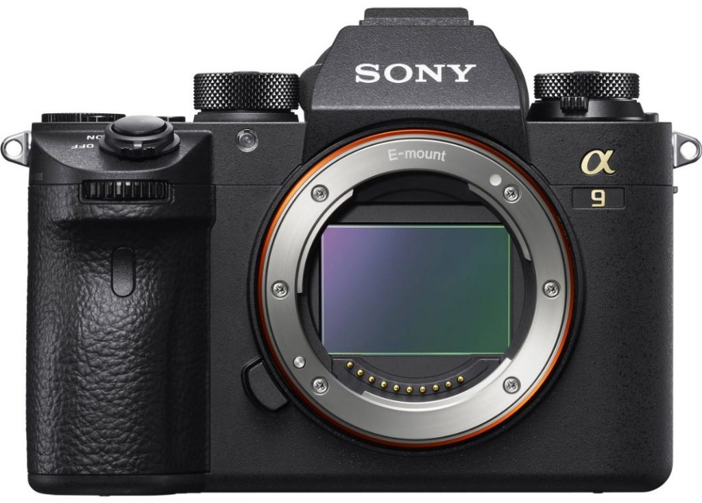 Best Cameras For Professionals
