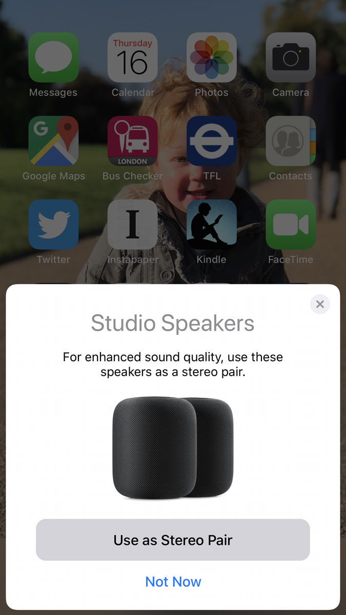 Theset of two HomePods as a stereo pair: Pair