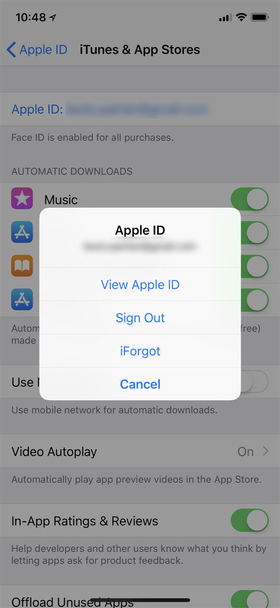 How to cancel a subscription on an iPhone: View Apple ID