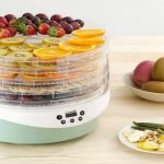 Best Food Dehydrator In India