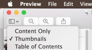 Show thumbnails of pages in pdf