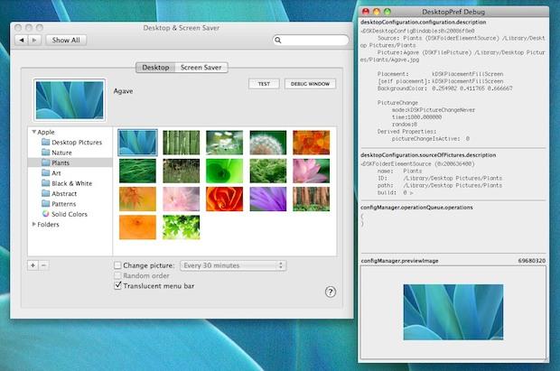 Mac OS X Desktop Background Debugger window