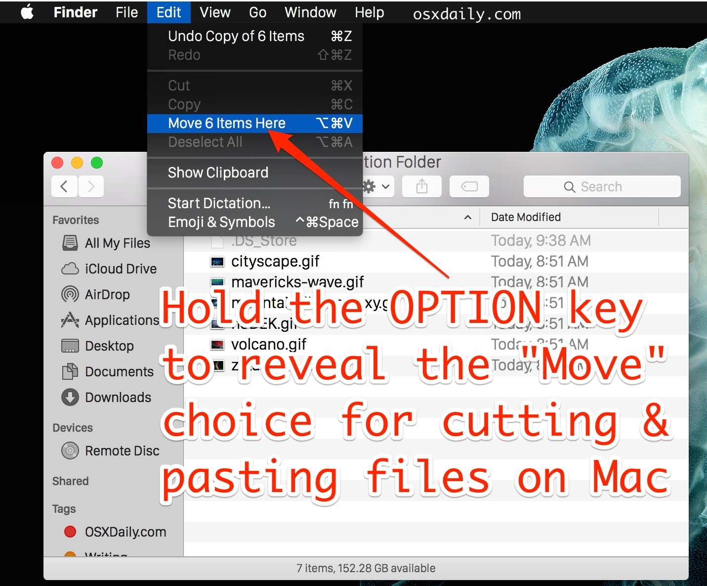 Cut and paste files in Mac OS X with the Move modifier option