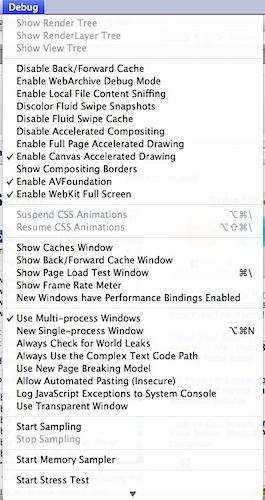 Safari's hidden debugging menu