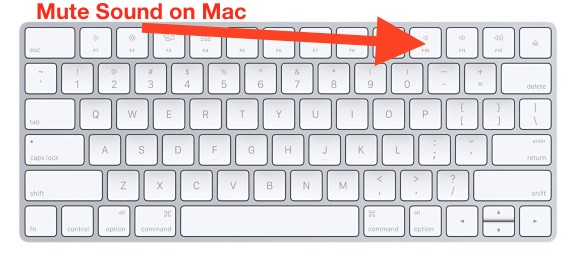 How to    Mute sound on Mac