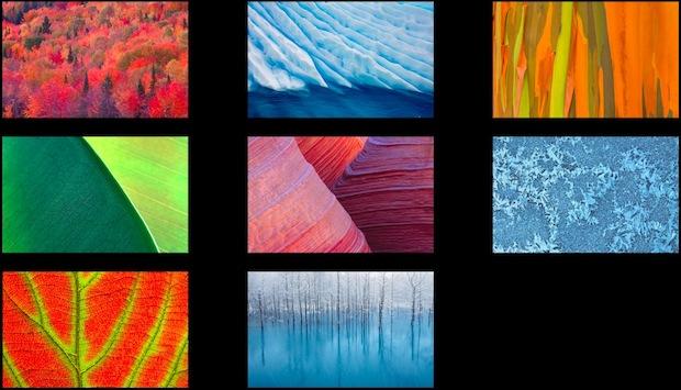 hidden nature patterns wallpapers