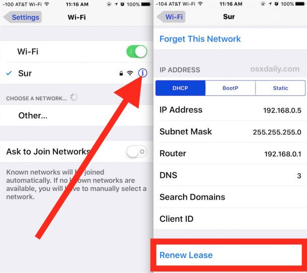 Renew a DHCP lease in iOS