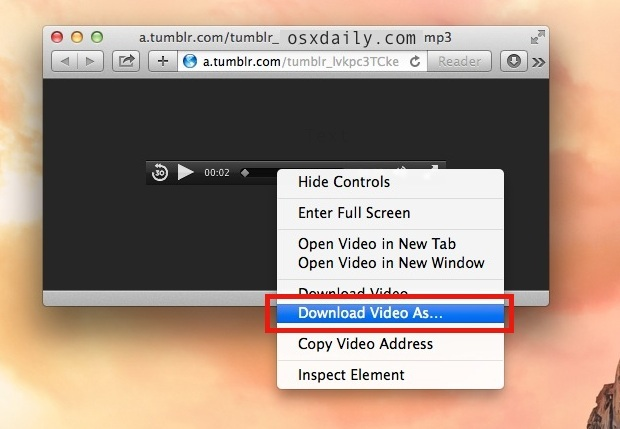 The Download Video As in Safari option saves audio or video files in their raw format