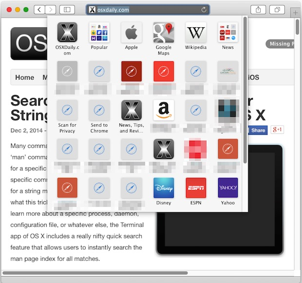 Safari bookmarks panel icons in Mac OS X