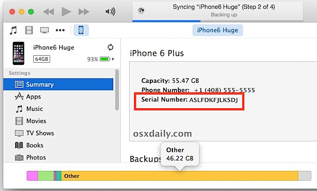 Finding an iPhone serial number through iTunes