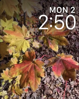 A custom Apple Watch watch face