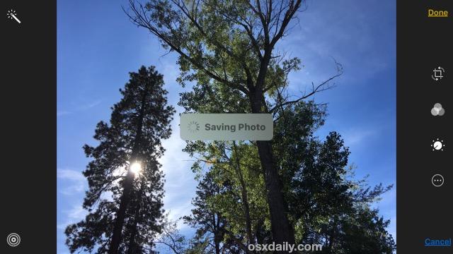 Convert a Live Photo to a photo