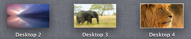 Spaces in OS X Lion