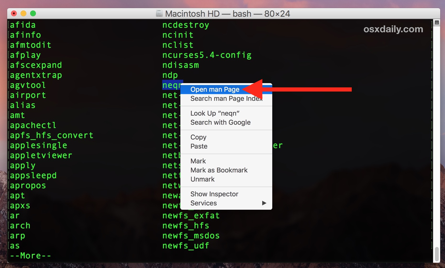 Show information about a specific terminal command