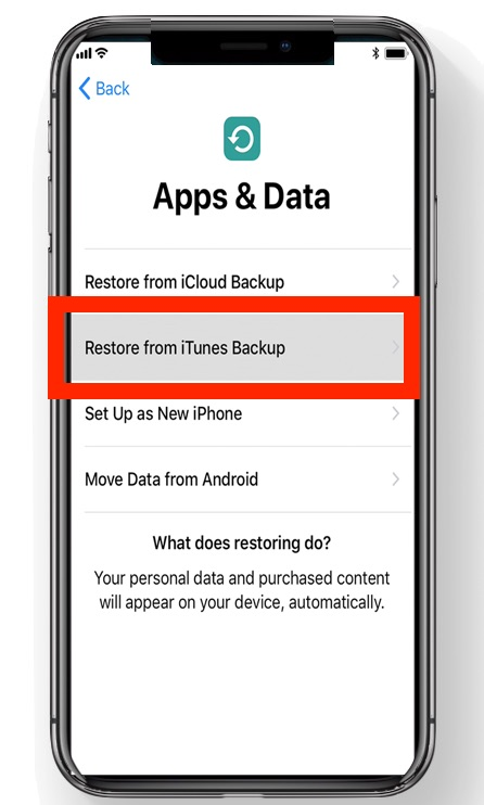 Choose Restore from iTunes Backupup