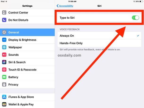 How to    turn on Type to Siri and use it on iOS