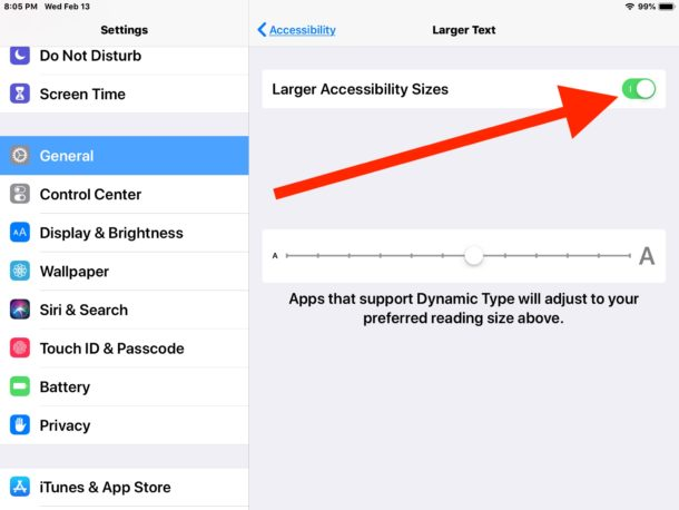 Turn on options for larger text size in Accessibility for iPad