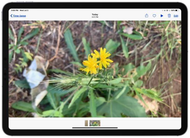 Play the recorded time-lapse video on the iPad