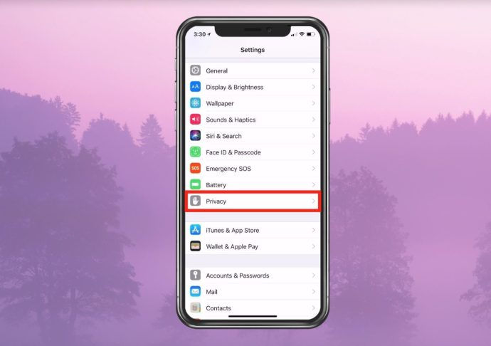 Privacy section of Settings