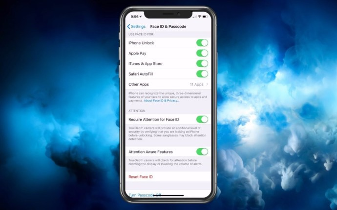 iphone x face id options