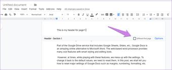 Google Docs Other Header Footer 8