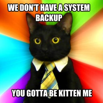 System administrator Kitty